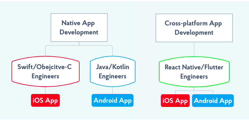 React Native and Flutter VS Native App Development