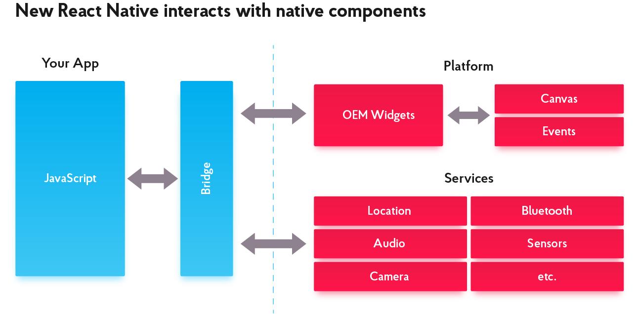 Flutter vs React Native: Choosing a Proper Programming Language